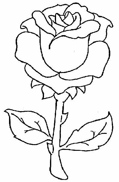 Imágenes de dibujos de flores | Imágenes