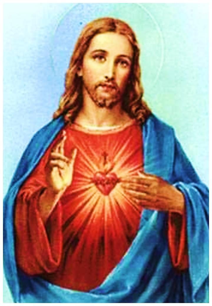 imagenes de santos