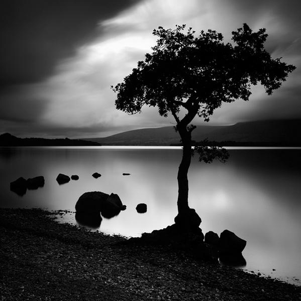 fotos blanco y negro