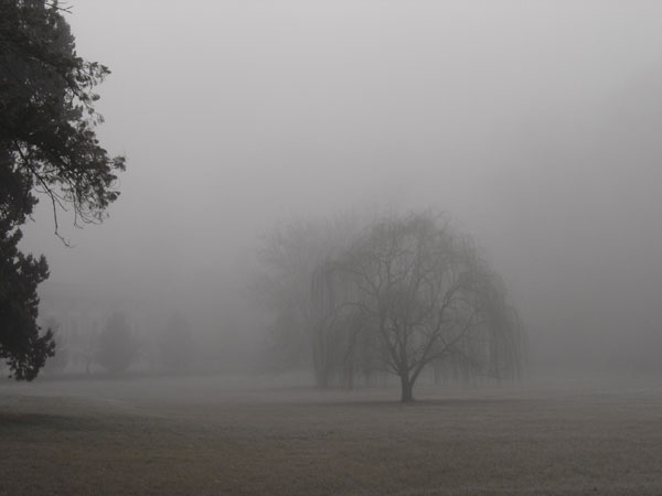 imagenes de invierno